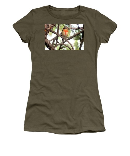 Rose-breasted Grosbeak Women's T-Shirt (Athletic Fit)