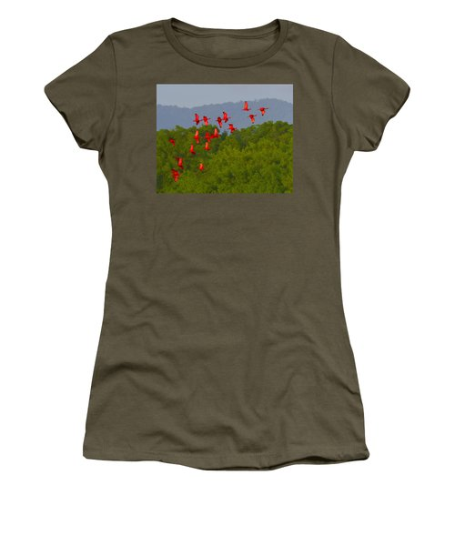 Scarlet Ibis Women's T-Shirt (Junior Cut) by Tony Beck