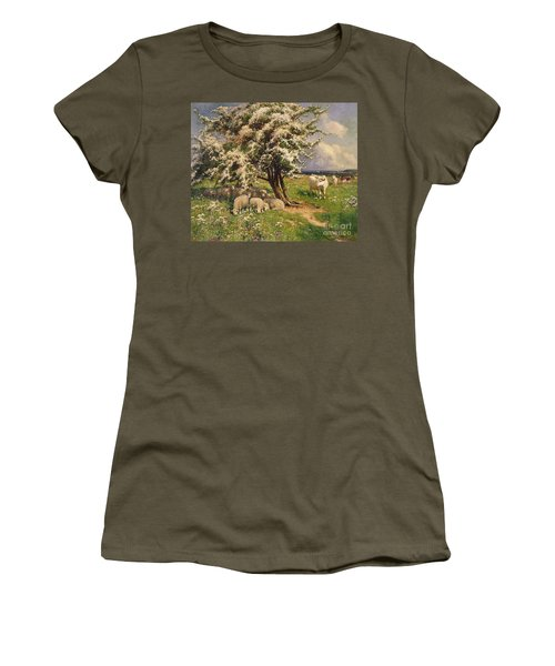 Sheep And Cattle In A Landscape Women's T-Shirt