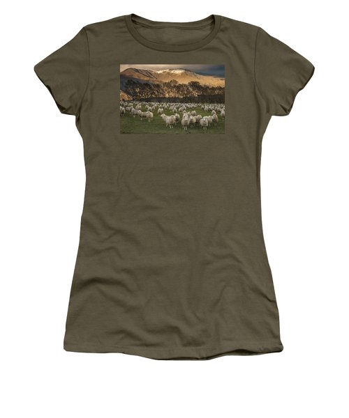 Women's T-Shirt featuring the photograph Sheep Flock At Dawn Arrowtown Otago New by Colin Monteath, Hedgehog House
