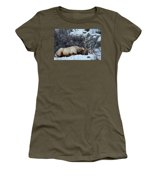 Sleeping Elk Women's T-Shirt