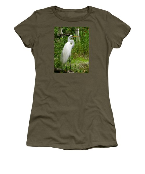 Snowy Egret Women's T-Shirt (Junior Cut) by Melinda Saminski