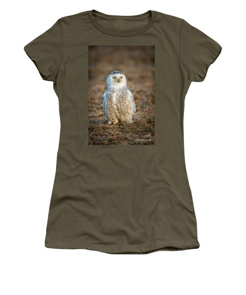 Snowy Owl Women's T-Shirt