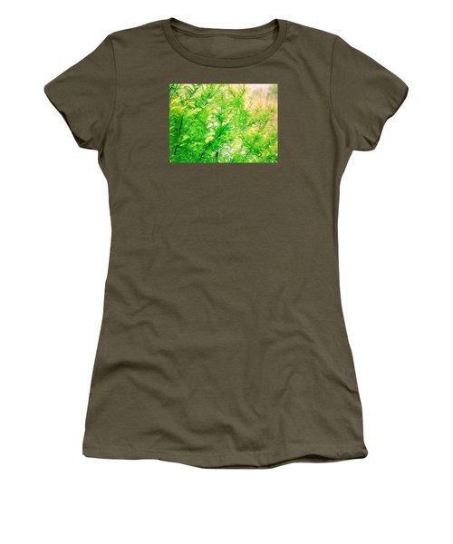 Spring Cypress Beauty Women's T-Shirt (Junior Cut) by Belinda Lee