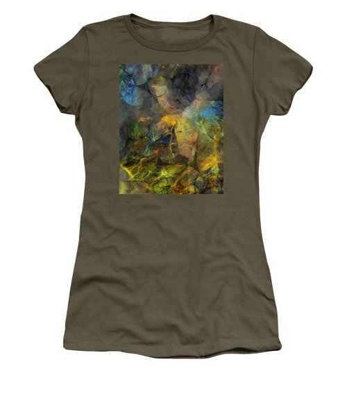 Stream Bed On A Sunny Day Women's T-Shirt