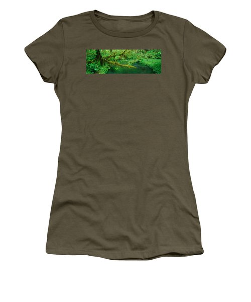 Stream Flowing Through A Rainforest Women's T-Shirt (Athletic Fit)