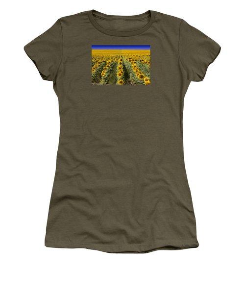 Sunflower Field Women's T-Shirt