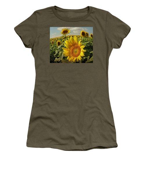 Kansas Sunflowers Women's T-Shirt (Junior Cut) by Chris Berry