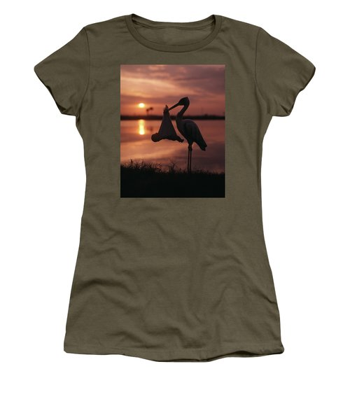 Sunrise Silhouette Of Stork Carrying Women's T-Shirt (Athletic Fit)