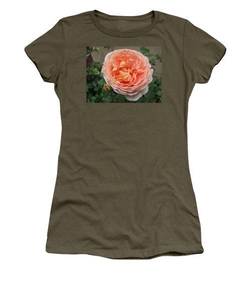 Women's T-Shirt (Junior Cut) featuring the photograph Sweet Rhapsody by Pema Hou