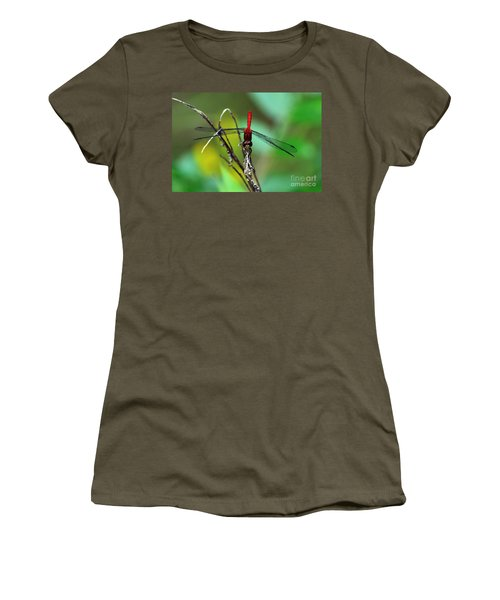 Taking A Bow Women's T-Shirt (Junior Cut) by Kevin Fortier
