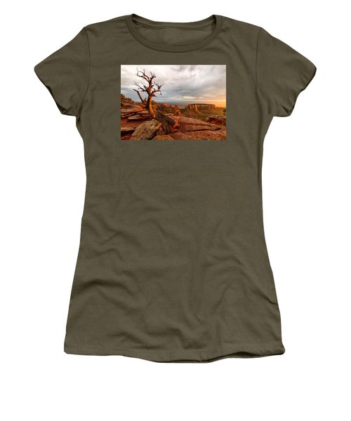 The Light On The Crooked Old Tree Women's T-Shirt (Junior Cut) by Ronda Kimbrow