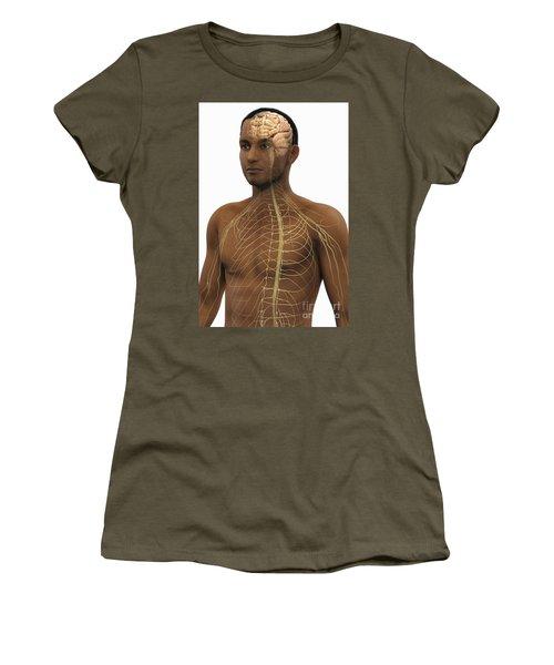 The Nerves Of The Upper Body Women's T-Shirt