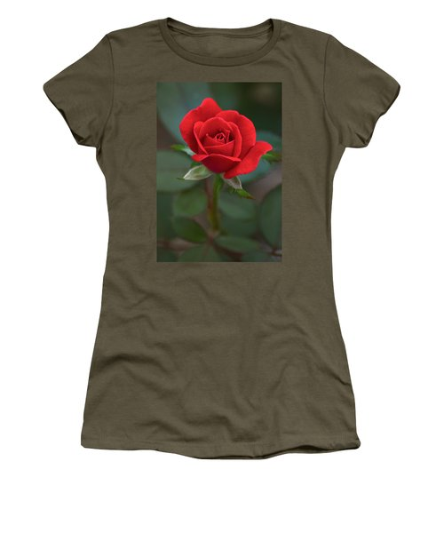 The Perfect Rose Women's T-Shirt