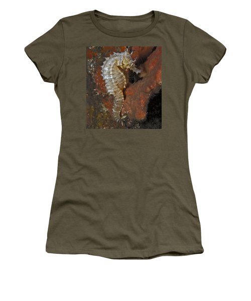 The White Seahorse Women's T-Shirt