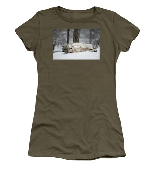 Timber Wolf In Winter Women's T-Shirt