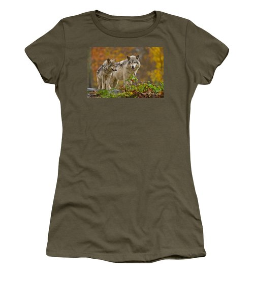 Timber Wolf Pictures 411 Women's T-Shirt