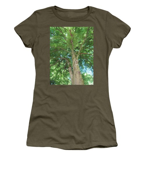 Women's T-Shirt (Junior Cut) featuring the photograph Towering Tree by Pema Hou