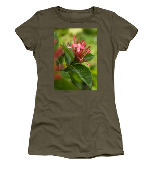 Tropical Flowers In Singapore Women's T-Shirt