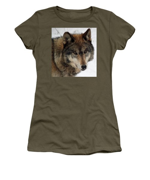 Women's T-Shirt (Junior Cut) featuring the photograph Trusting by Richard Bryce and Family