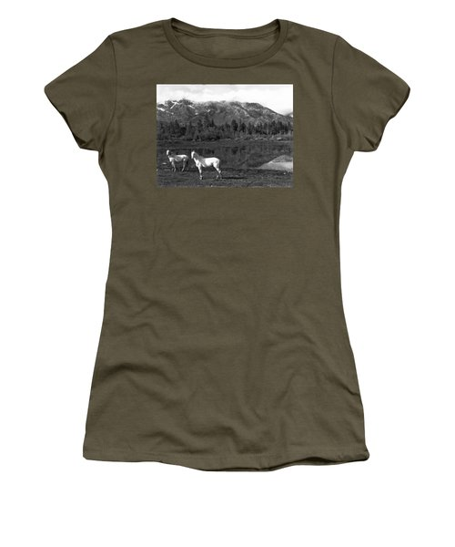 Two White Horses By A Pond Women's T-Shirt