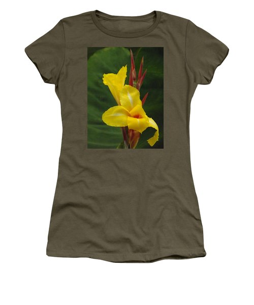 Velvety Yellow Iris  Women's T-Shirt (Junior Cut) by Brenda Brown