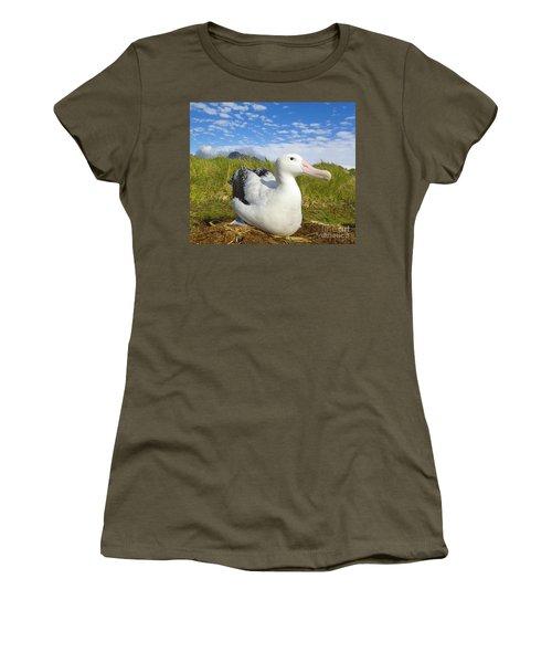 Wandering Albatross Incubating  Women's T-Shirt (Junior Cut) by Yva Momatiuk John Eastcott