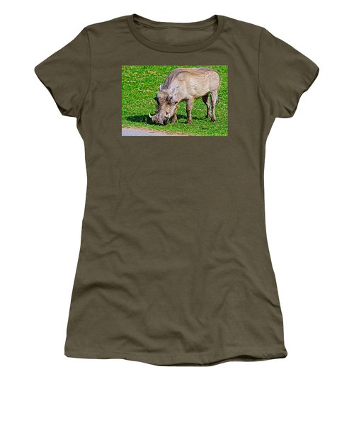 Warthog In Addo Elephant Park Near Port Elizabeth-south Africa  Women's T-Shirt (Athletic Fit)