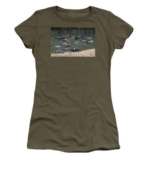 Water Buffalo Women's T-Shirt
