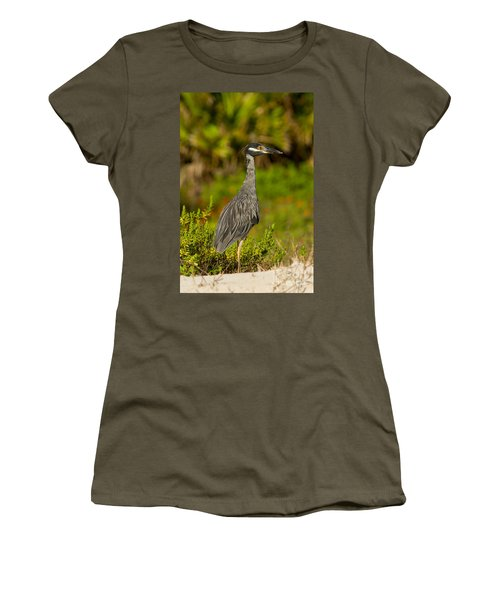 Yellow Crowned Night Heron Dune Watch Women's T-Shirt