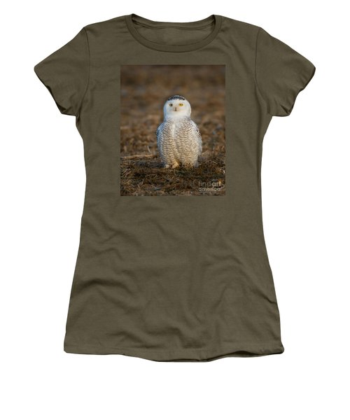 Young Snowy Owl Women's T-Shirt