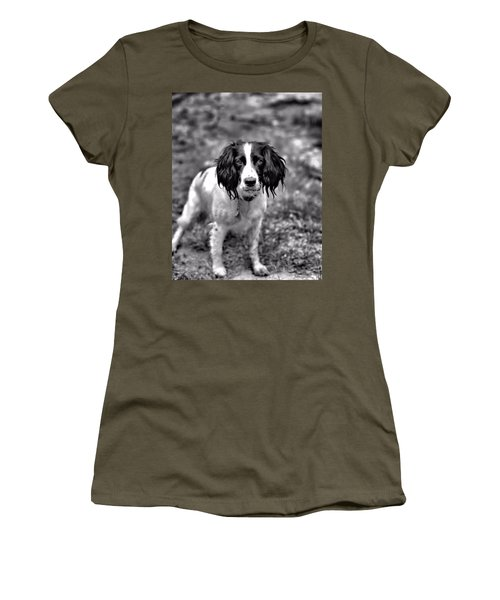 Springer Spaniel Women's T-Shirt