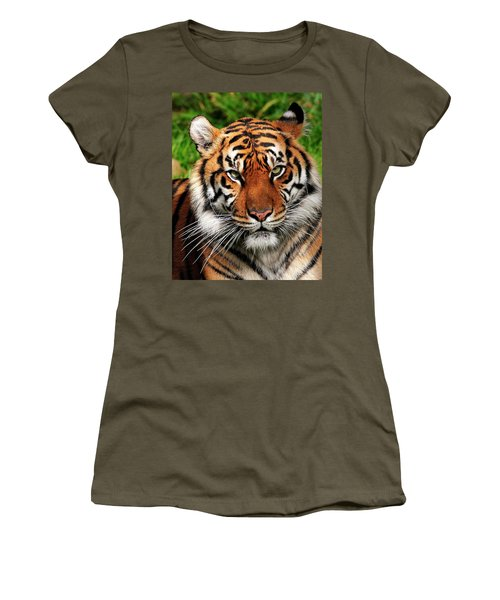 Sumatran Tiger Portrait Women's T-Shirt