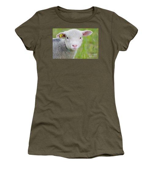 Young Sheep Women's T-Shirt