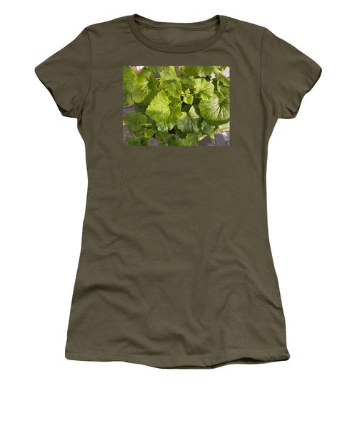 A Green Leafy Vegetable Plant After Watering In Bright Sunrise Women's T-Shirt (Junior Cut) by Ashish Agarwal