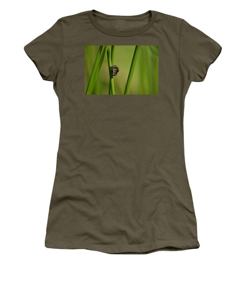 Women's T-Shirt (Junior Cut) featuring the photograph A Jumper In The Grass by JD Grimes