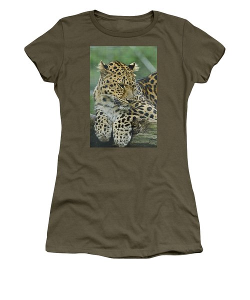 Amur Leopard Women's T-Shirt