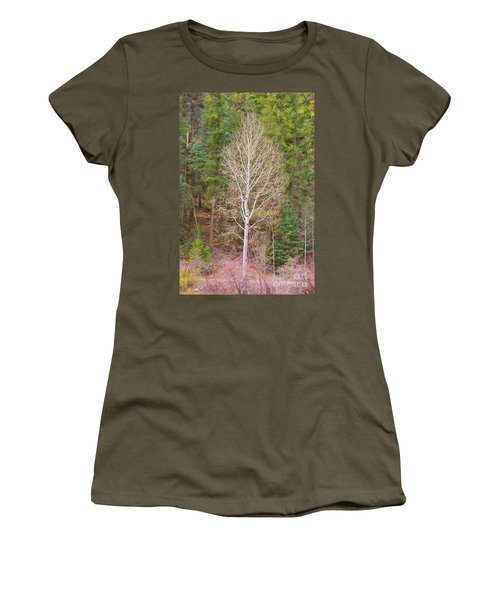 Aspen Tree Forest Road 249 Women's T-Shirt (Athletic Fit)