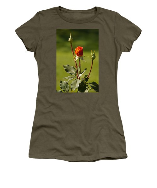 Women's T-Shirt (Junior Cut) featuring the photograph Autumn Rose by Mick Anderson