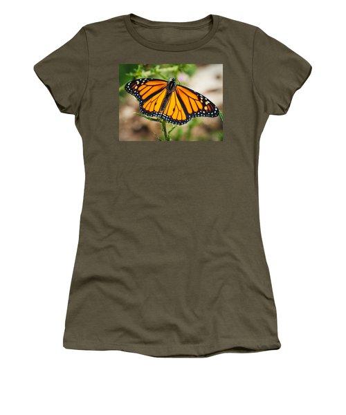 Women's T-Shirt (Junior Cut) featuring the photograph Beautiful Boy by Cheryl Baxter