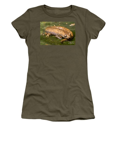 Bolitoglossine Salamander Women's T-Shirt (Junior Cut) by Dante Fenolio
