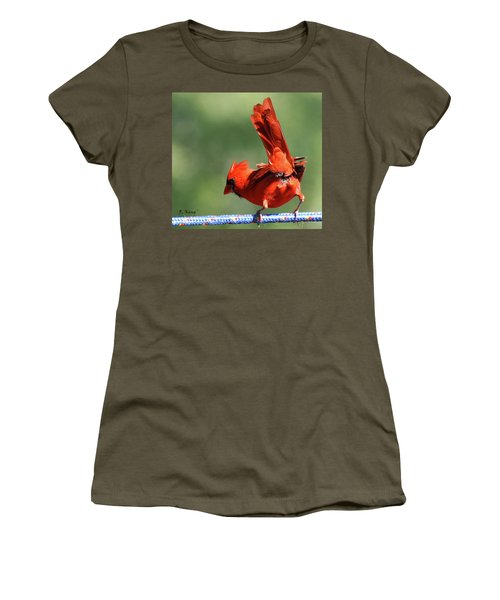 Cardinal-a Picture Is Worth A Thousand Words Women's T-Shirt (Athletic Fit)