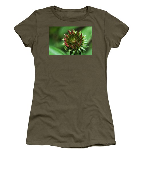 Coneflower Close-up Women's T-Shirt