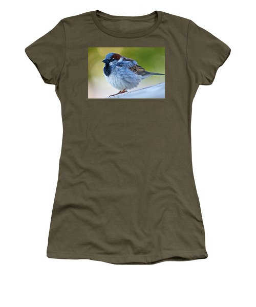Women's T-Shirt (Junior Cut) featuring the photograph Guard Bird by Colleen Coccia
