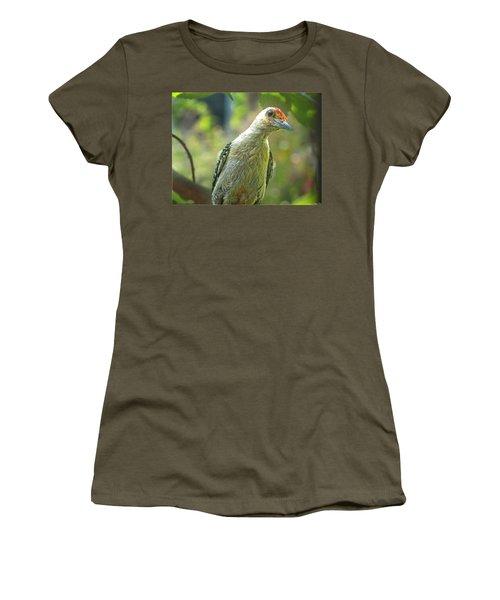 Women's T-Shirt (Junior Cut) featuring the photograph Inquisitive Woodpecker by Debbie Portwood