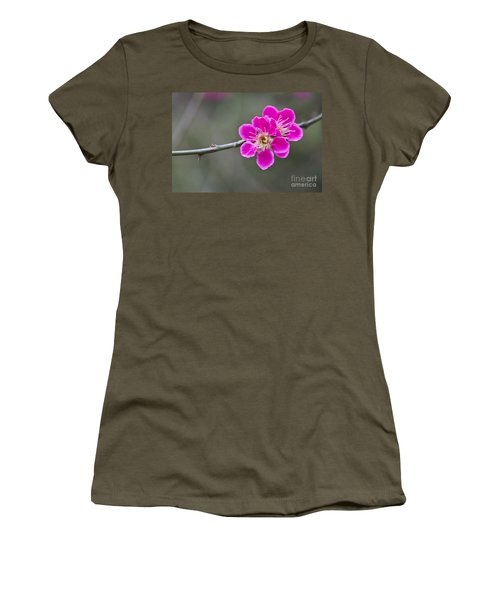 Japanese Flowering Apricot. Women's T-Shirt (Athletic Fit)