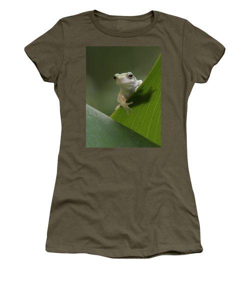 Juvenile Grey Treefrog Women's T-Shirt