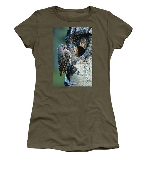Northern Flicker Women's T-Shirt