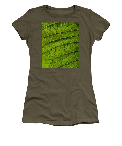 Poinsettia Leaf II Women's T-Shirt