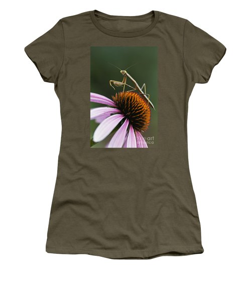 Praying Mantis And Coneflower - D008024 Women's T-Shirt
